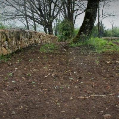 créa mur 2