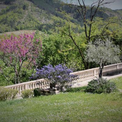 jardin fleuri 1
